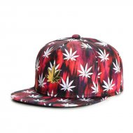 Cayler & Sons GL Best Budz  Snapback Cap red...