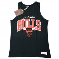 Mitchell & Ness - Chicago Bulls Team Arch Tank Top...