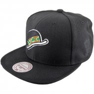 Mitchell & Ness Snapback Boston Celtics Elements | NBA