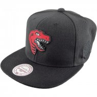 Mitchell & Ness Snapback Toronto Raptors Elements | NBA